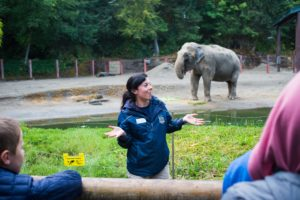 Keeper Piper talk at elephants for daily presentations