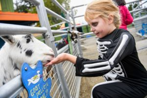 Girl in skeleton costume with goat at Zoo Boo
