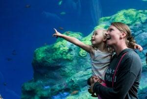 aquarium mom and girl