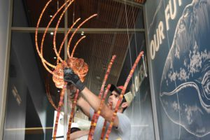 A crew member from Fabrication Specialists attaches a jellyfish to a cable.