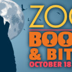 zoo booze and bites poster