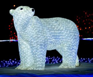 zoolights polar bear close