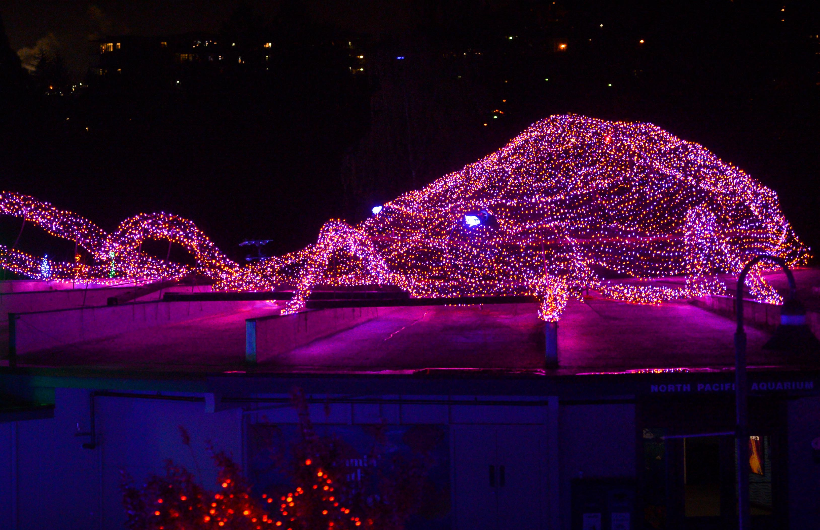 Turtle Back Zoo Christmas Lights 2019.Prepping For Zoolights Point Defiance Zoo Aquarium