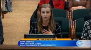 Shay Steevs gives testimony to legislators against plastic bags.
