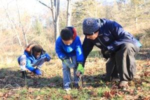 Teacher and boys digging