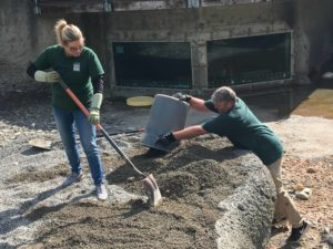 volunteers shoveling sand