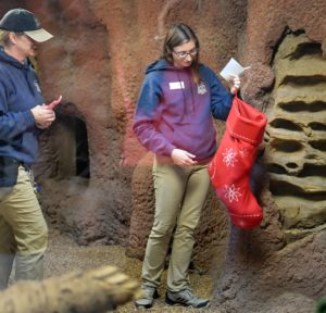 keepers with meerkat stocking