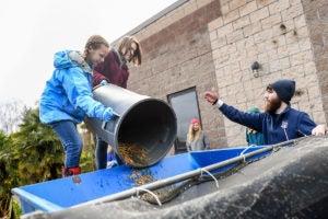 girls dumping compost