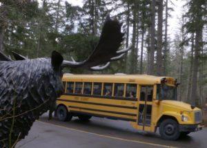 school bus at wildlife park
