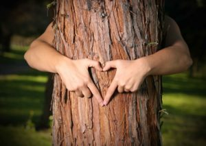 hands hugging tree