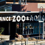 zoo front gate