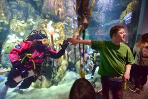 diver in aquarium