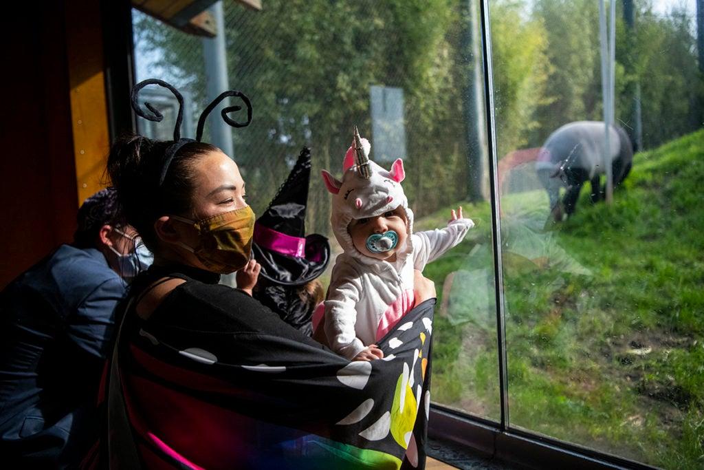 kid mask costume tapir