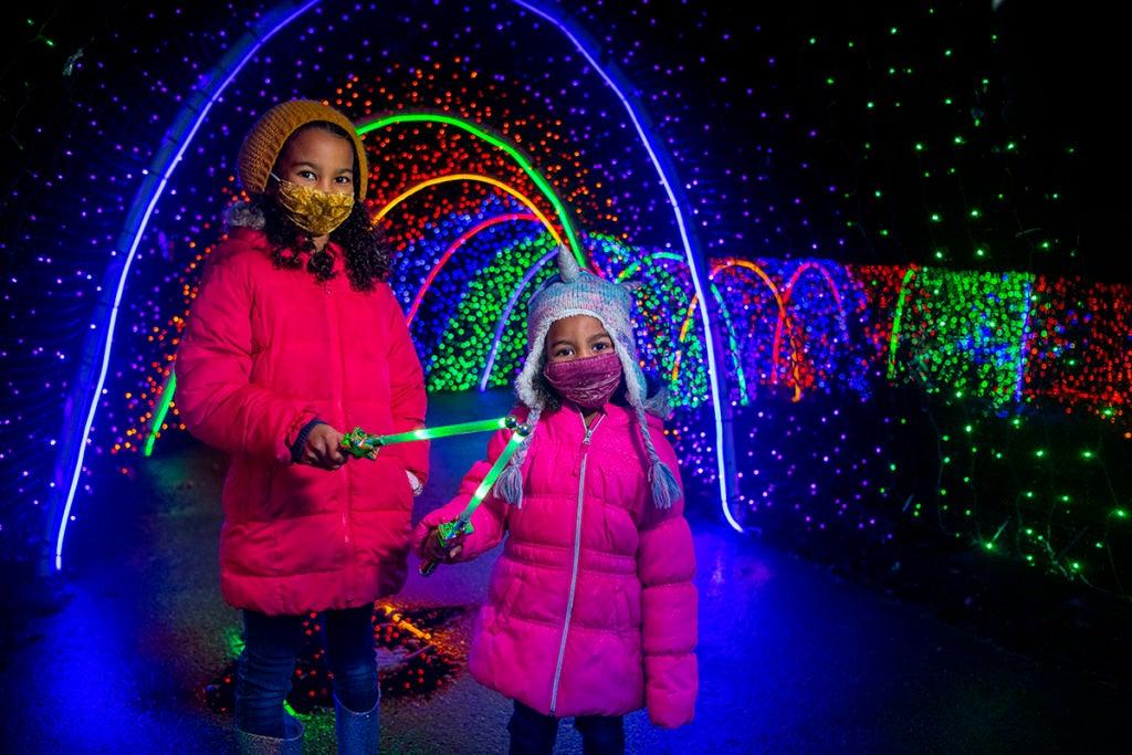 zoolights girls wand