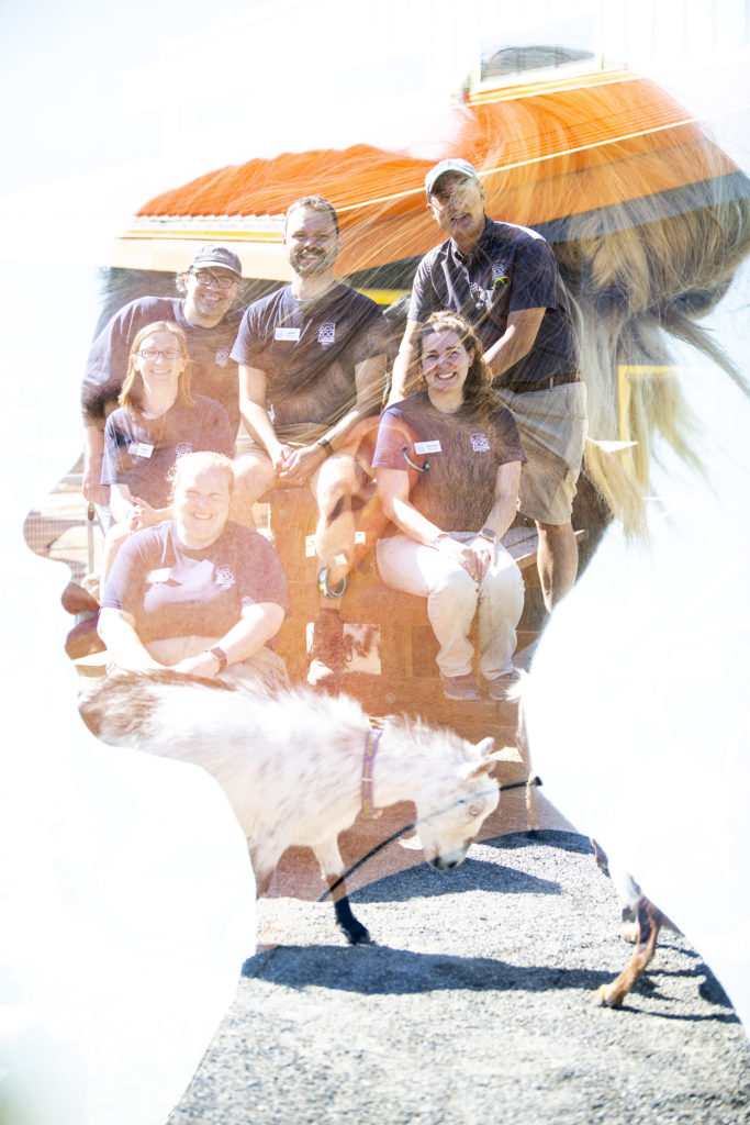 double exposed shot of keeper and team