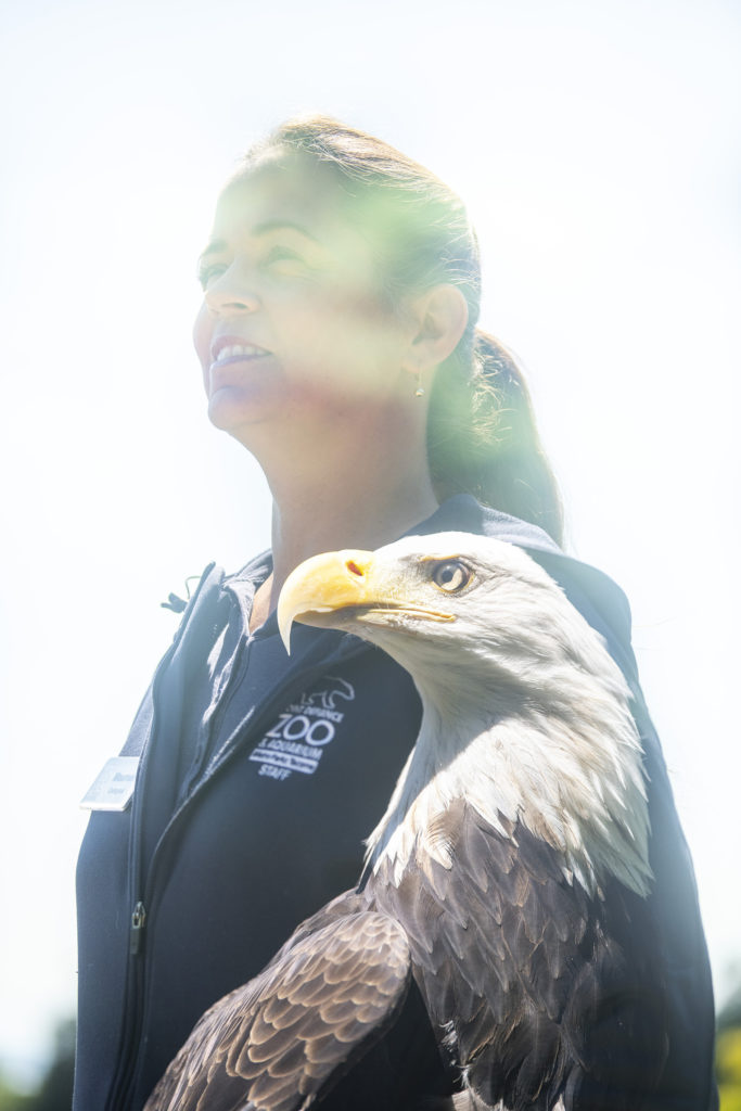 double exposed shot of keeper and eagle