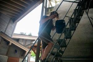 keeper Jessie climbing stairs