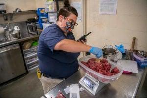 keeper Sam measures tiger meat