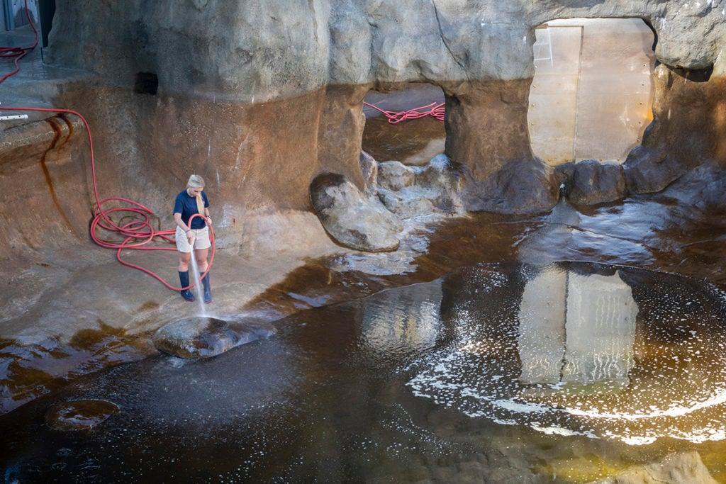 keeper Stephanie cleans pool