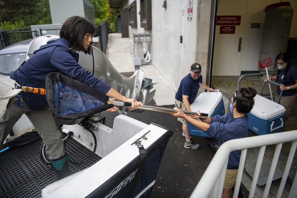aquarists load the nets