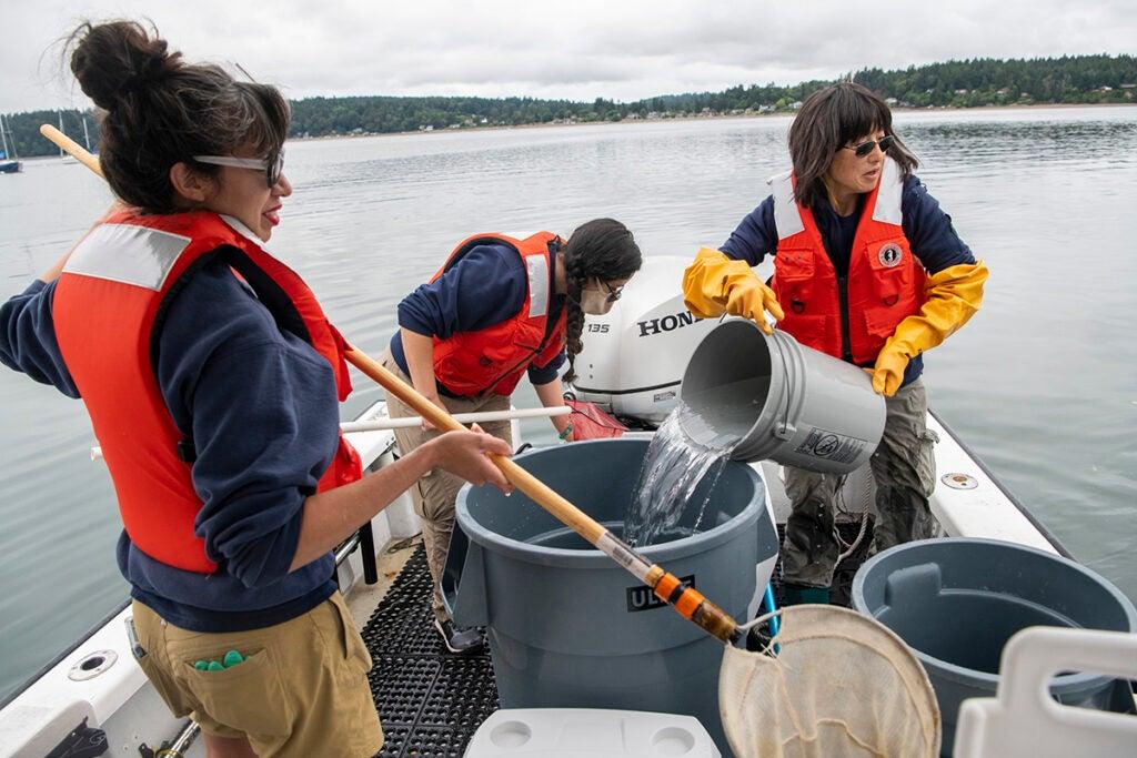 aquarist fills extra bucket