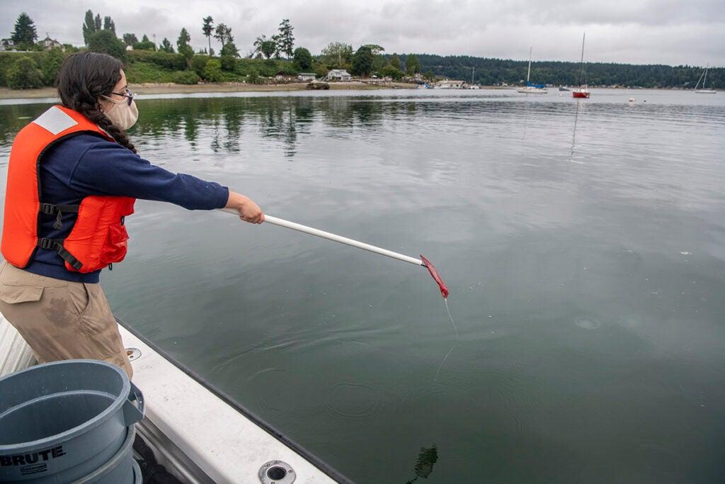 aquarists point nets